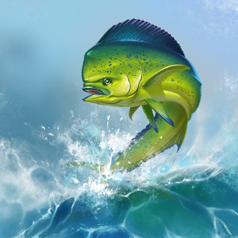 Mahi mahi fish stock illustration