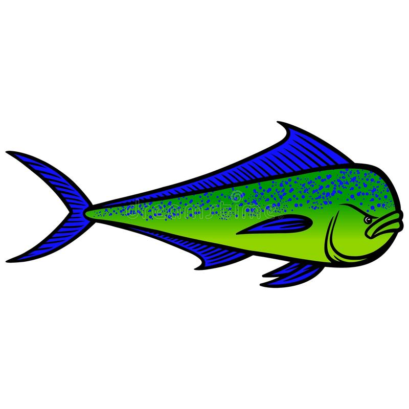 Mahi Mahi fisk stock illustrationer