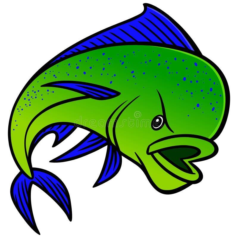 Mahi Mahi. A illustration of a Mahi Mahi fish royalty free illustration