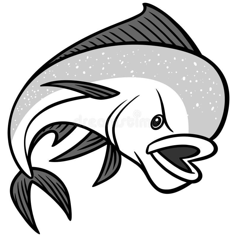 Mahi Mahi illustration. A vector illustration of a Dolphin Fish stock illustration