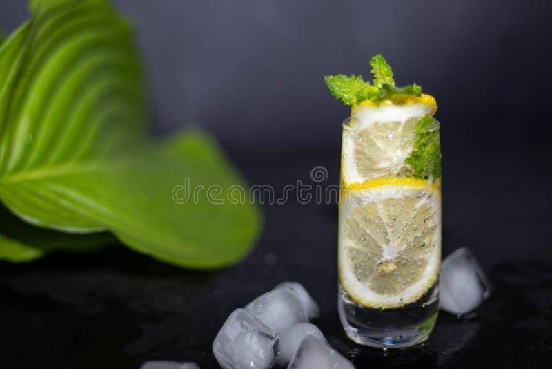 Mahito饮料用柠檬、冰和薄菏在一块小,清楚的玻璃 库存照片
