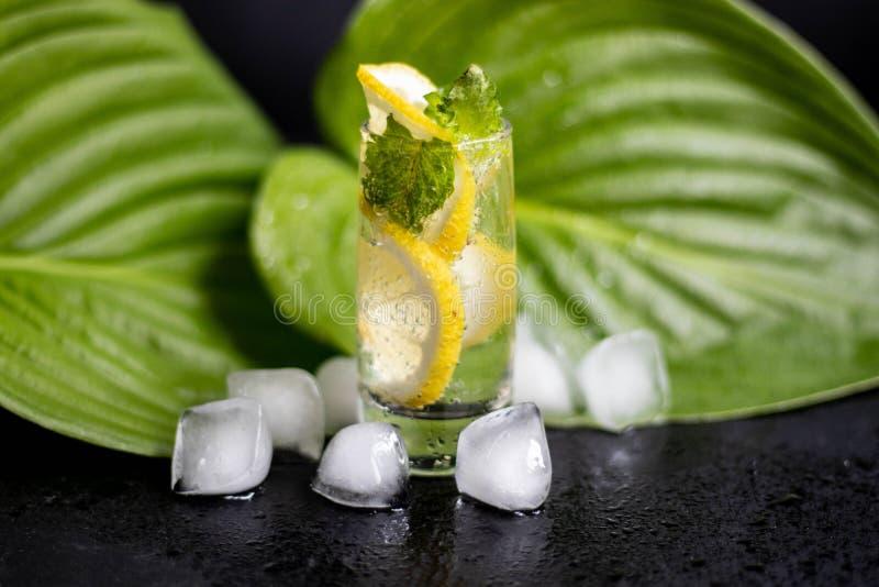 Mahito-Getränk mit Zitrone, Eis und Minze in einem kleinen, Klarglas lizenzfreie stockfotos