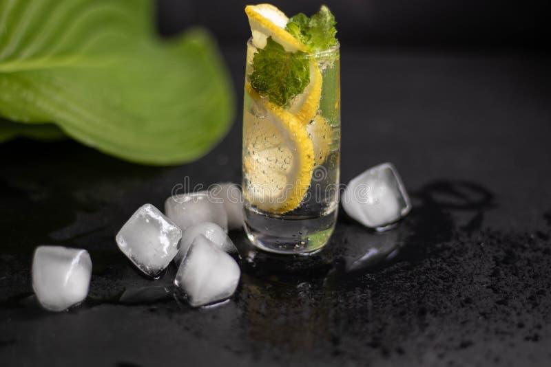 Mahito-Getränk mit Zitrone, Eis und Minze in einem kleinen, Klarglas lizenzfreie stockfotografie