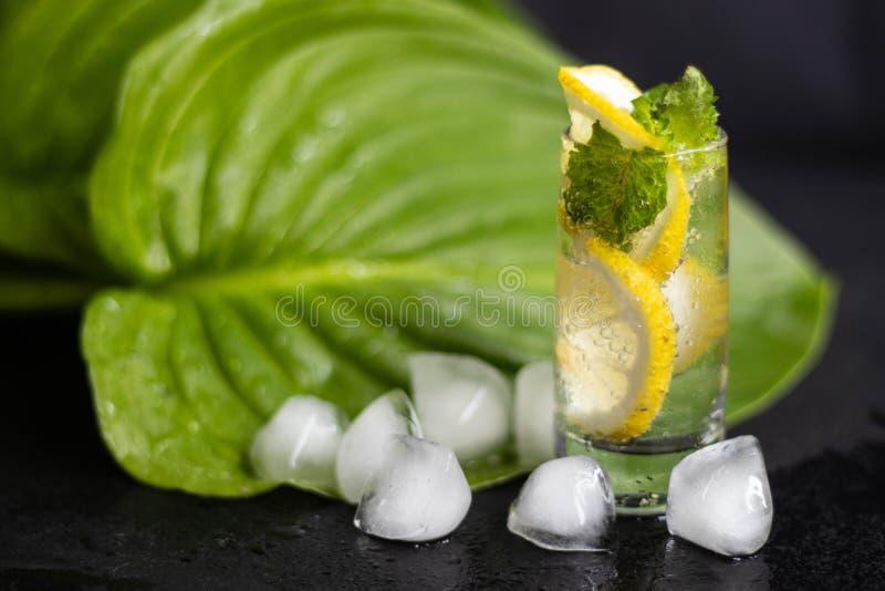 Mahito-Getränk mit Zitrone, Eis und Minze in einem kleinen, Klarglas stockbilder
