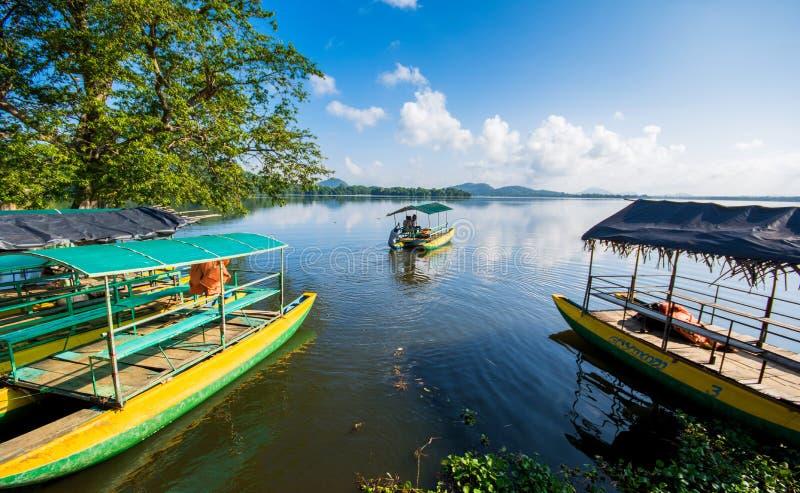 Mahiyanganaya Sorabora湖,斯里兰卡 库存照片