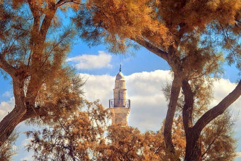 Mahmoudiya Mosque in frame of orange trees leaves. Tall tower of minaret is part of Mahmoudiya Mosque in frame of orange trees leaves, Old Jaffa, Tel-Aviv royalty free stock photography