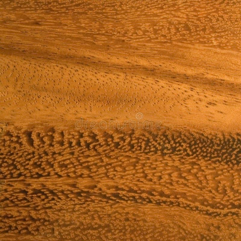 Download Mahogany wood grain stock photo. Image of endangered, desirable - 630198