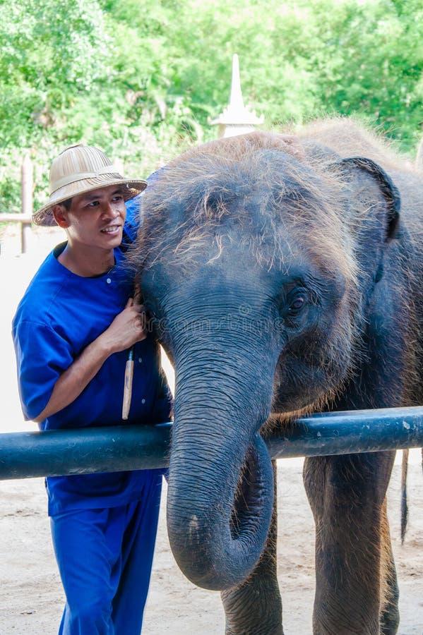 Mahout和他的大象在Samphran大象在佛统研了&动物园2014年5月24日 免版税库存照片