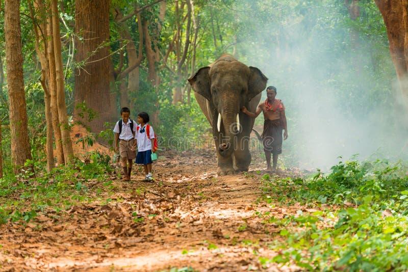 Mahout e studenti in uniforme che camminano insieme all'elefante sopra fotografia stock libera da diritti