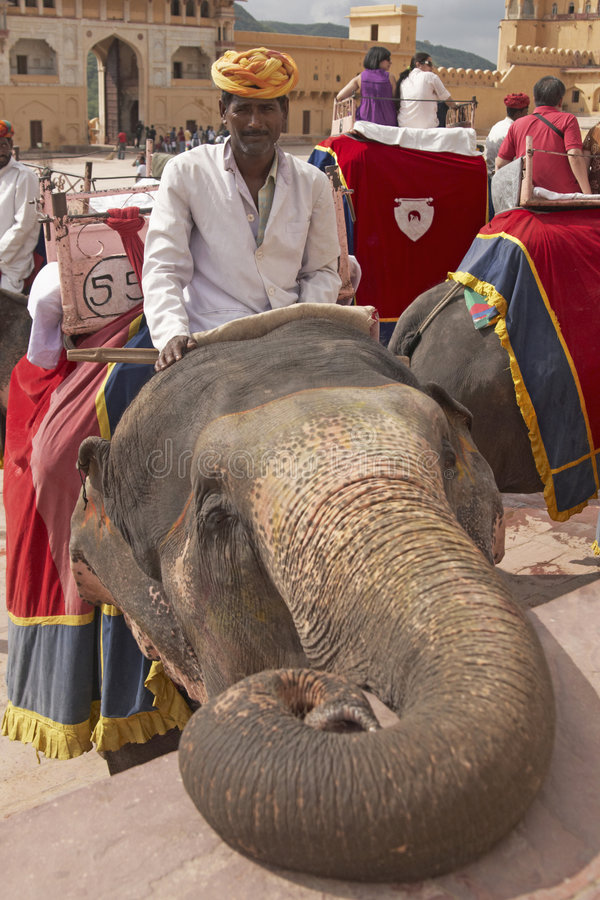 Mahout and Elephant stock photo