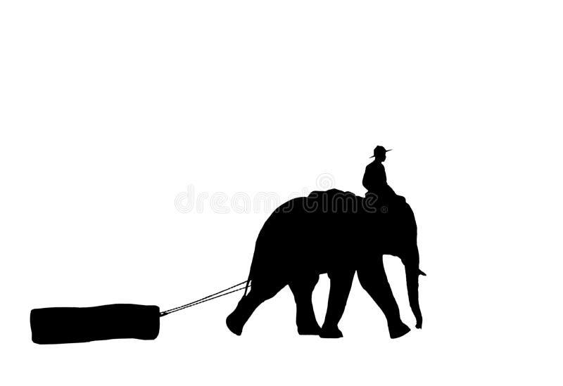 Mahout ride elephant. stock photo