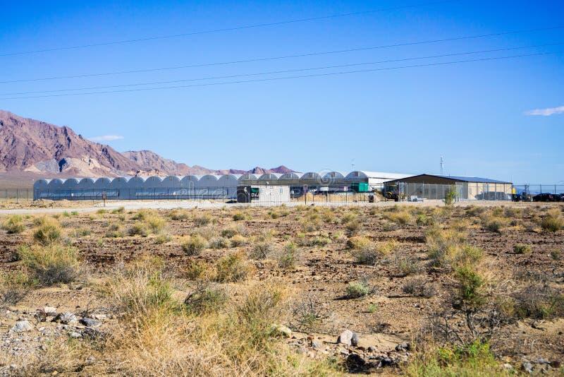 28. Mai 2018 Death Valley/CA/USA - außerhalb der Ansicht der Marihuana-Apotheke gelegen an Death- Valleykreuzung lizenzfreies stockfoto