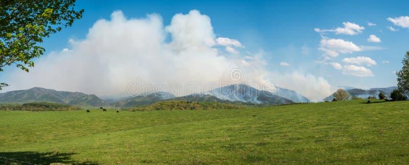 4. Mai 2018 - Raphine, Virginia, USA: Ein verheerendes Feuer verbreitet nordwärts in Richtung zum Nationalpark Shenandoah stockfotos