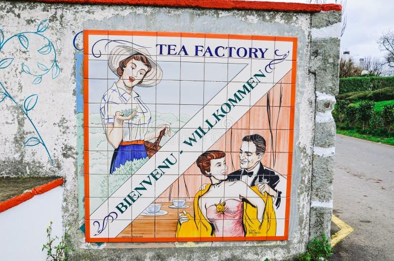 Maia, Azorerna, Portugal - 14 januari 2020: Gorreana Tea Plantation i Sao Miguel Gå in i tefabriken med gammal kaka fotografering för bildbyråer