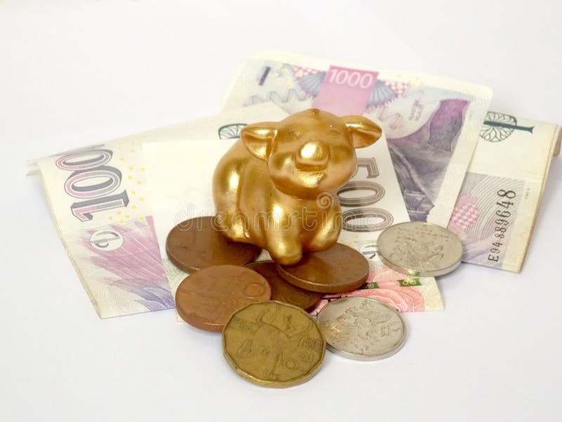 Maiale dorato su soldi fotografia stock