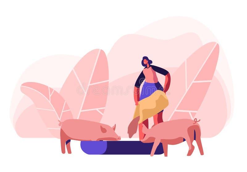 Maiali d'alimentazione della giovane donna che mettono grano nella depressione Agricoltore femminile Character a preoccuparsi di  illustrazione di stock