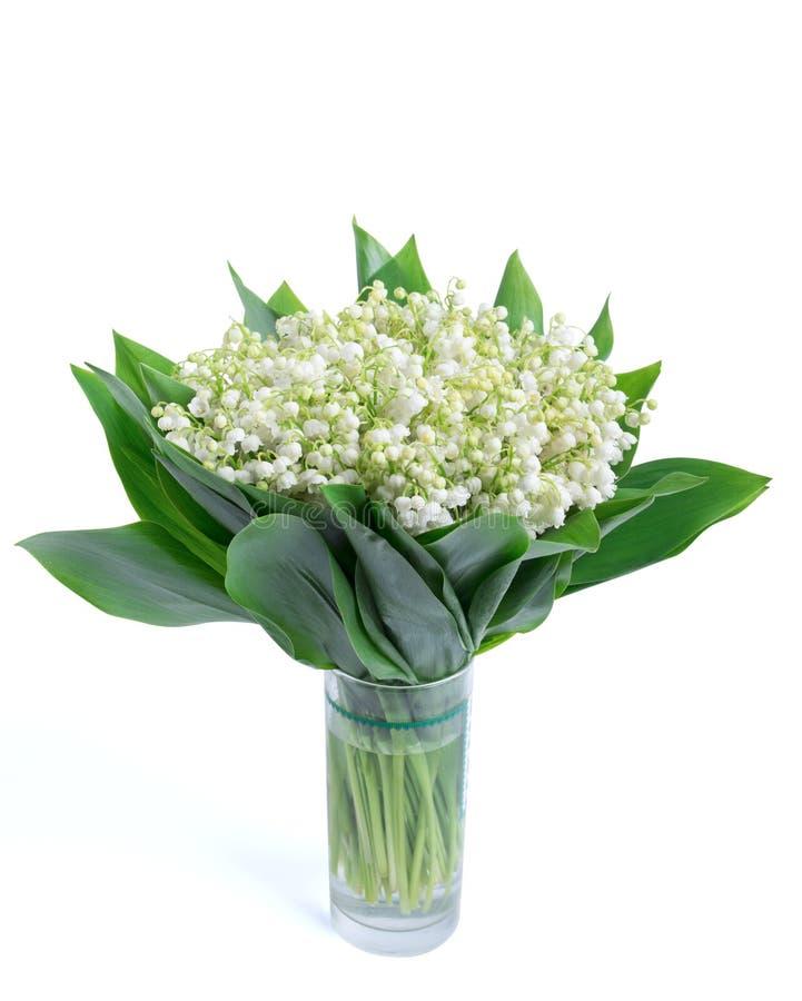 Maiglöckchen auf dem weißen Hintergrund lokalisiert, Wege, Blumenstrauß, stockfotografie