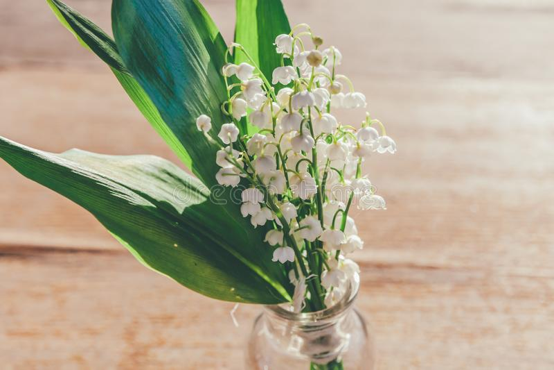 Maiglöckchen oder Könnenlilie lizenzfreies stockbild