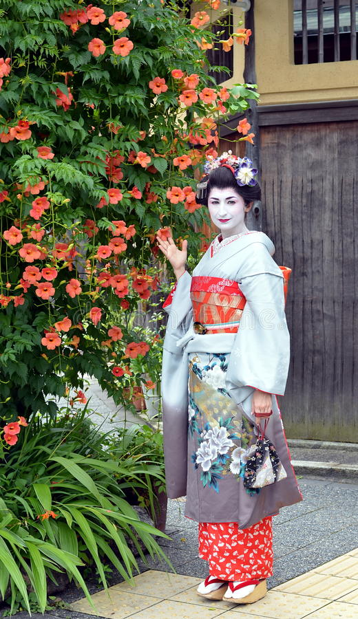 Maiko摆在与花的,京都,日本 库存图片