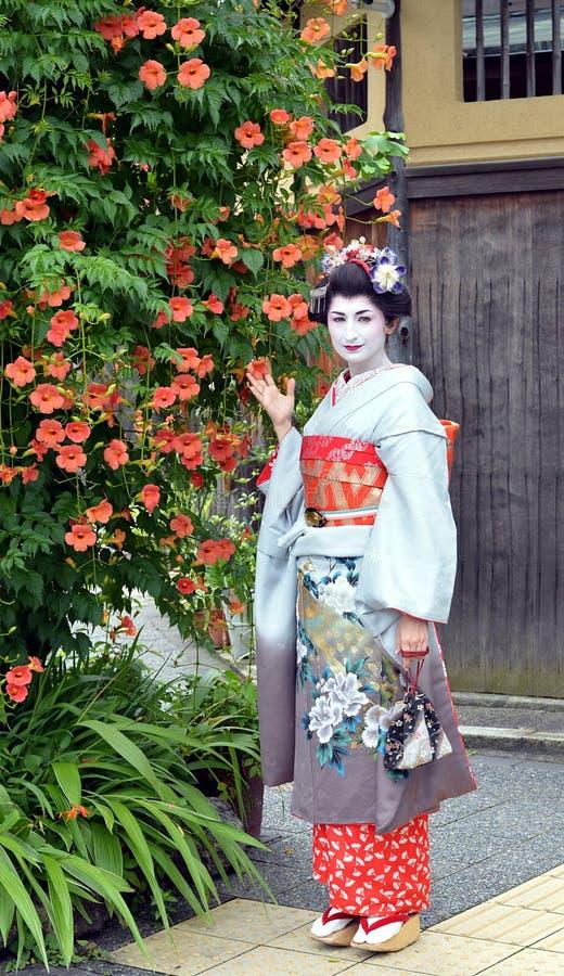 Maiko, das mit Blumen, Kyoto, Japan aufwirft stockbild