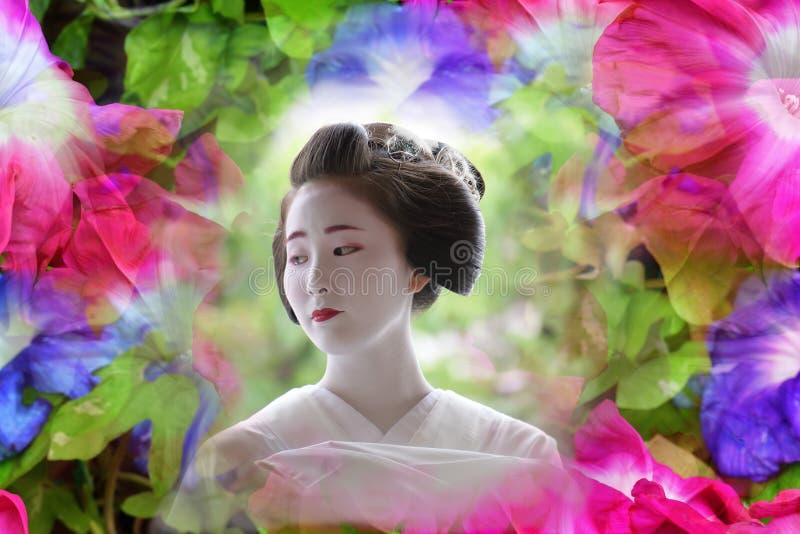 Maiko dziewczyna w lato sukni, Kyoto Japonia obraz royalty free