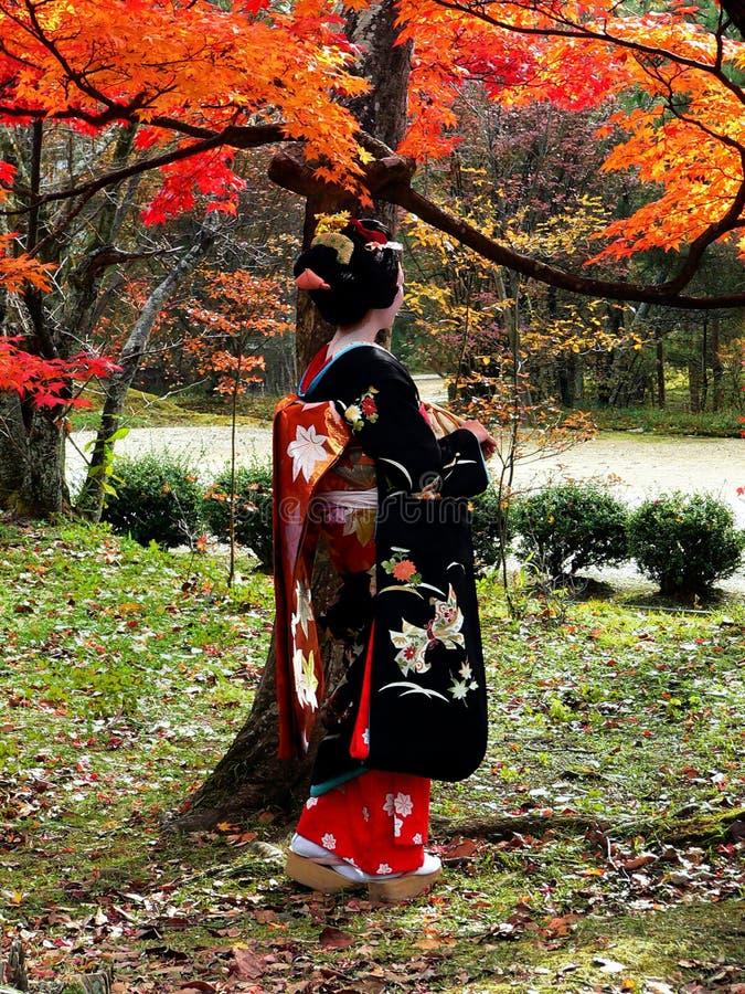 Maiko e foglie rosse, Kyoto Giappone fotografia stock