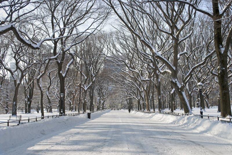 Mail de Milou Central Park images libres de droits