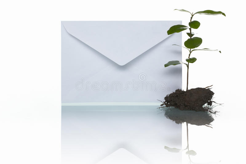 Download Mail And Green Plant Stock Photo - Image: 14679180