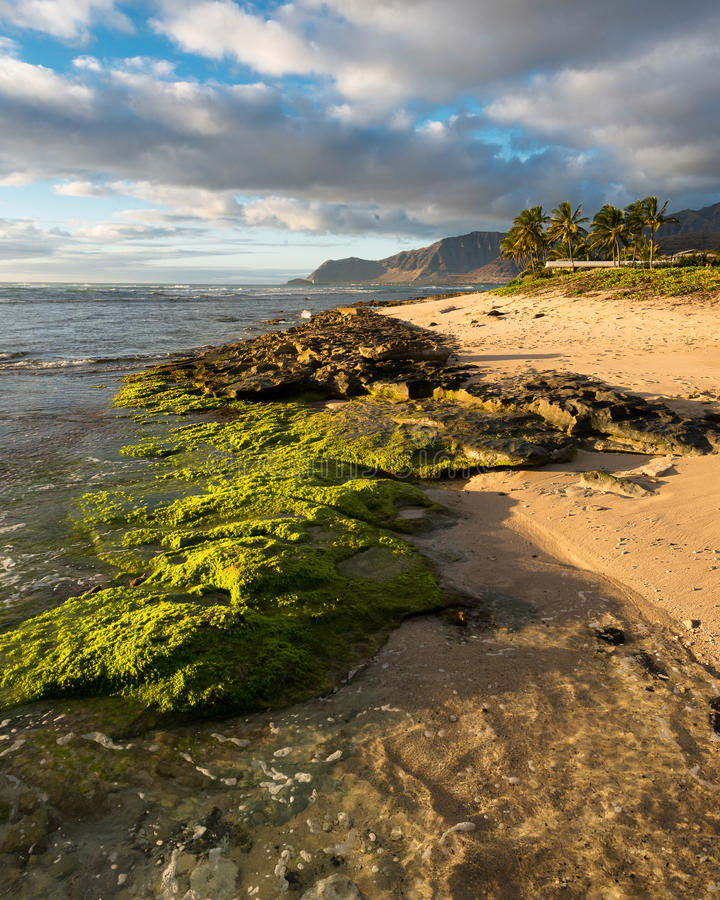 Maili Beach. Park in Waianae, Hawaii royalty free stock photos