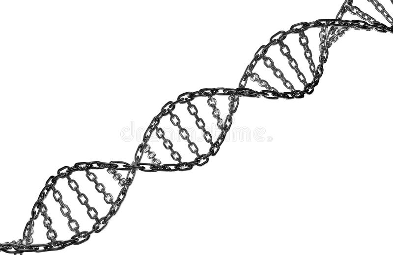 Maillon de chaîne en métal d'hélice d'ADN illustration libre de droits
