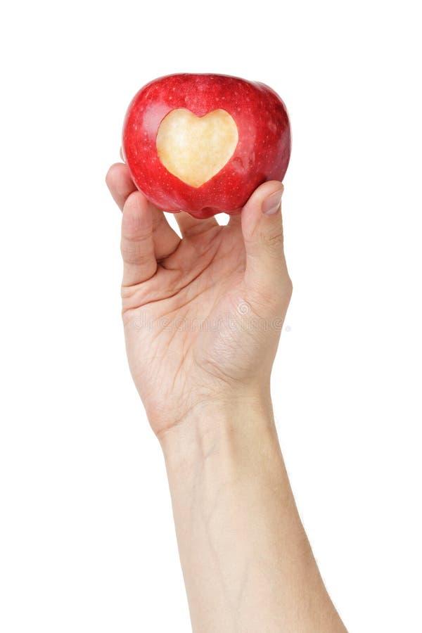 Main adulte d'homme tenant la pomme avec le coeur découpé images libres de droits
