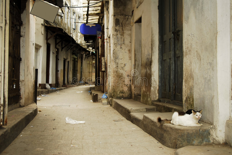 Main alley way, Stone Town, Zanzibar stock photos
