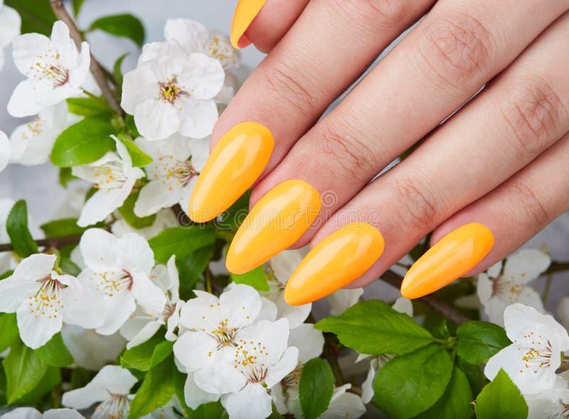 Main avec de longs ongles manucurés artificiels colorés avec le vernis à ongles jaune image libre de droits