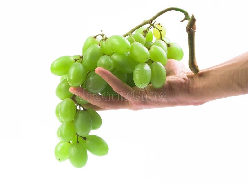 Main avec du raisin image libre de droits