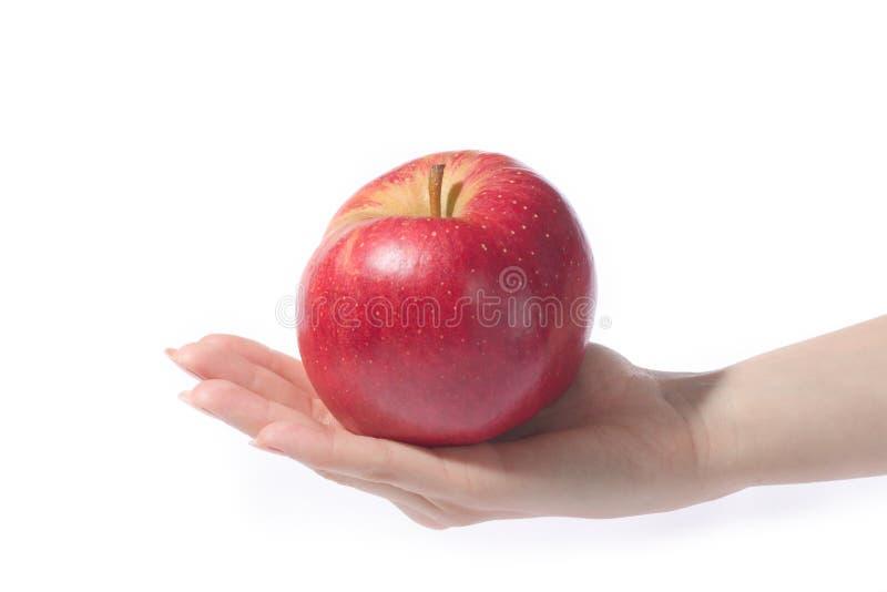 Main avec la pomme images libres de droits