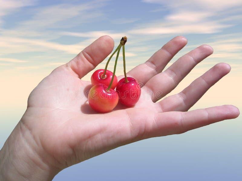 Main avec le fruit photo libre de droits