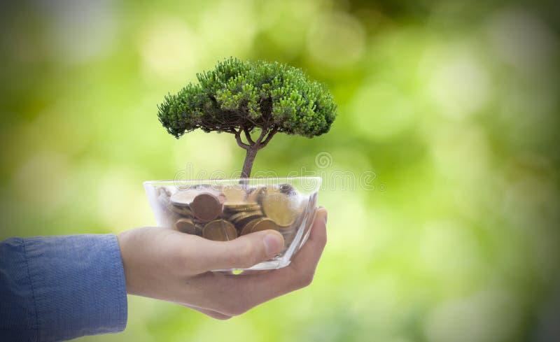 Main avec le pot de pièce de monnaie photos libres de droits