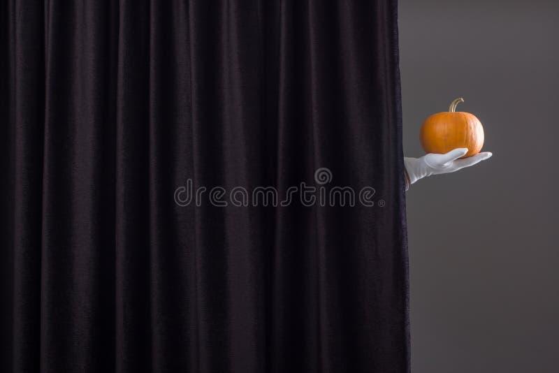 Main avec le potiron mûr photographie stock libre de droits