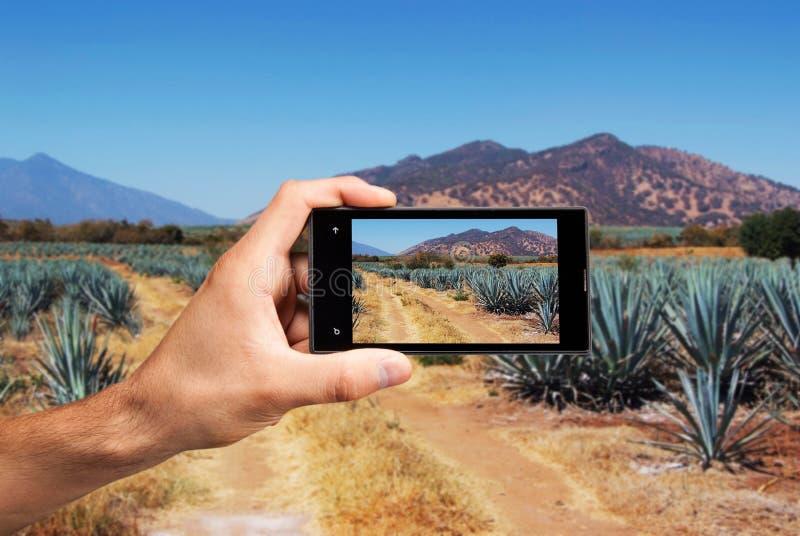 Main avec le téléphone portable photos stock