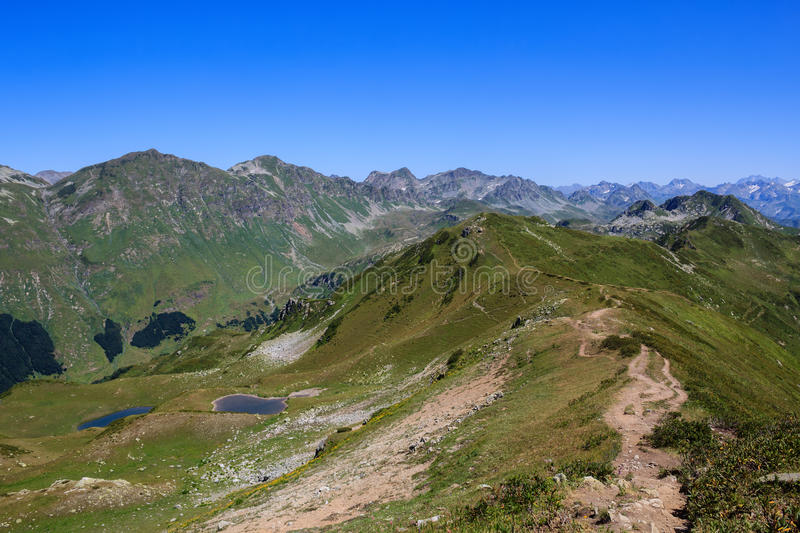 The Main Caucasian Ridge southern slope covered with alpine meadows. Southern slope of The Main Caucasian Ridge covered with green alpine meadows and evergreen royalty free stock photos