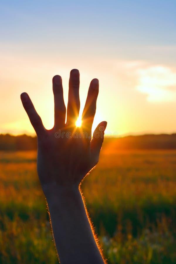 Main contre le coucher du soleil photo libre de droits