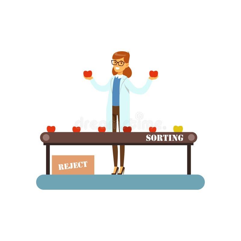 Main-d'œuvre féminine assortissant le fruit sur la ligne de convoyeur, illustration de vecteur d'étape de processus de fabricatio illustration stock