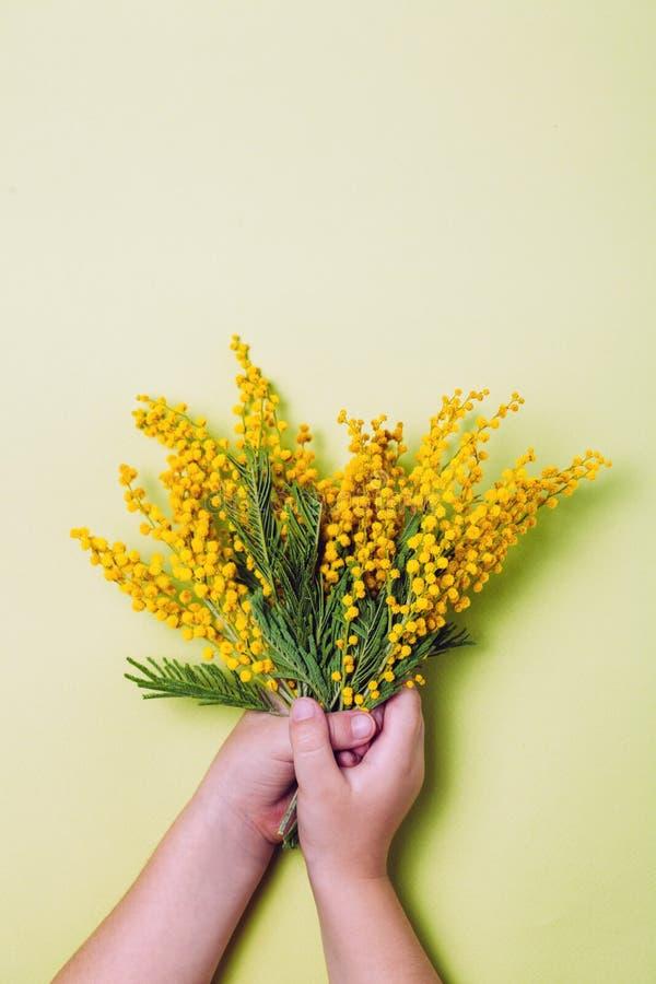 Main d'enfant tenant les fleurs jaunes de mimosa sur le fond jaune photos libres de droits