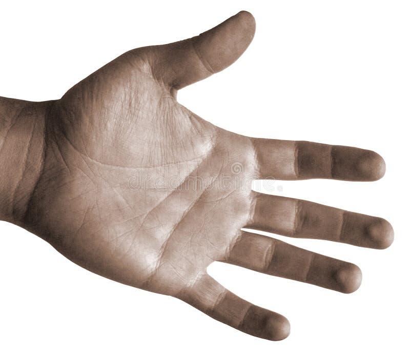 Main d'isolement par Paumes-Vers le haut photos libres de droits