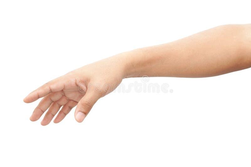 Main d'un homme photo libre de droits