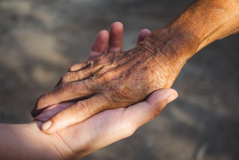 Main d'une jeune femme tenant la main d'une personne âgée image stock