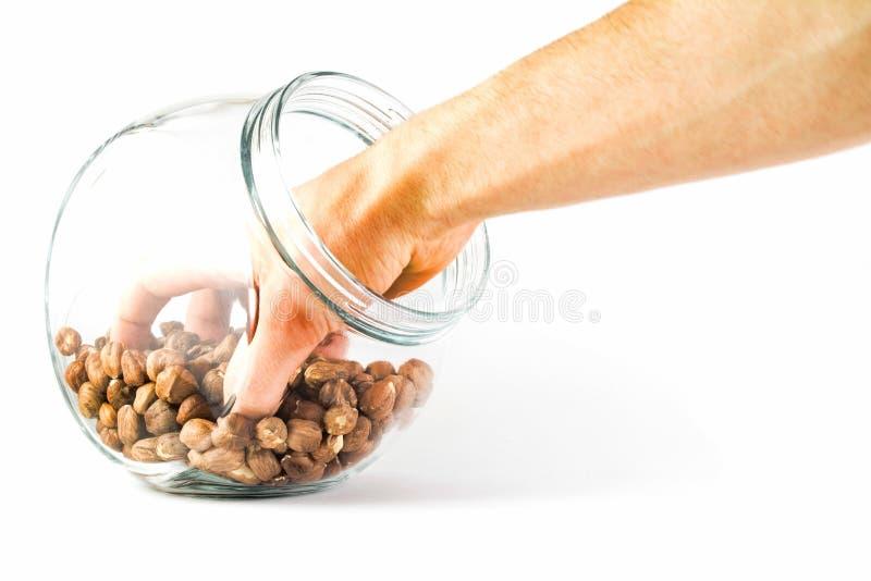 Main dans un pot en verre avec des noisettes d'isolement sur un blanc photo libre de droits