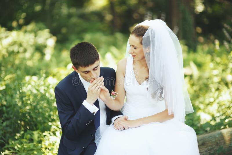 Main de baiser de marié de sa belle jeune mariée. image stock