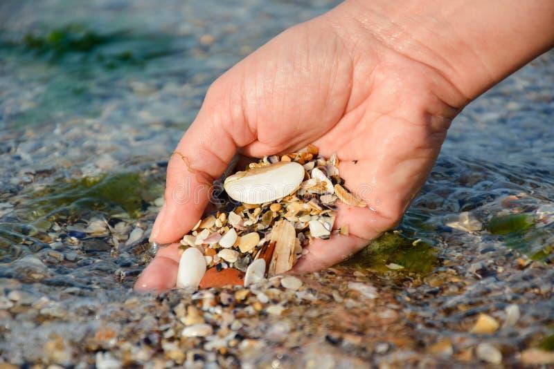 Main de femme avec des coquillages, vacances images stock