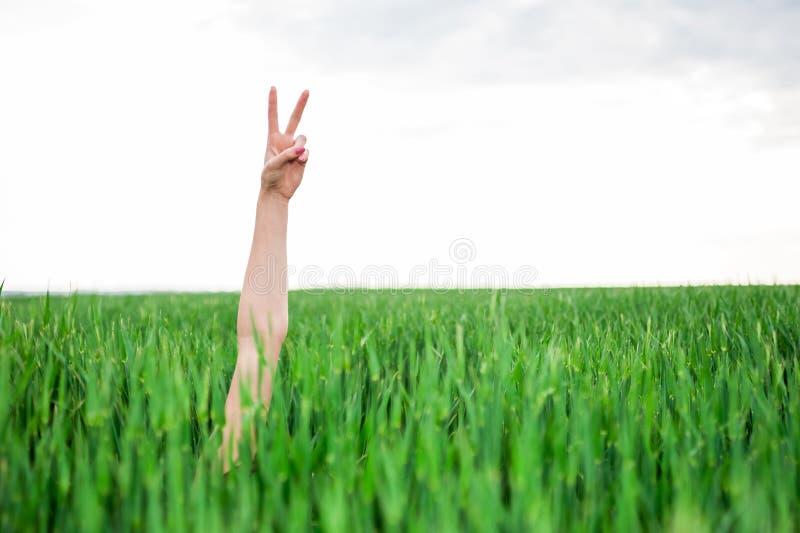Main de femme faisant le signe de victoire image libre de droits